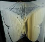 livre plie papillon serge site